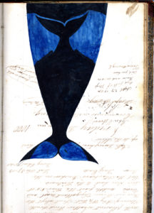Painted whale with notes