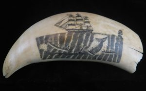 Scrimshaw with whaling ship and whale