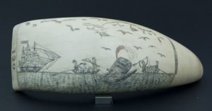 Scrimshaw with whalers spearing a whale